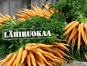 kasvishovi_porkkananippu